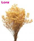 50-55 Gram Kurutulmuş Sarı Cipso - 98944