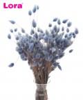 35-50 Gram Kurutulmuş Mavi Pamuk Otu - 99068