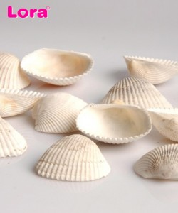 Deniz Ürünleri - 14233