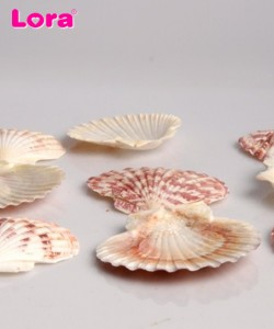 Deniz Ürünleri - 14230