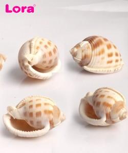 Deniz Ürünleri - 14103