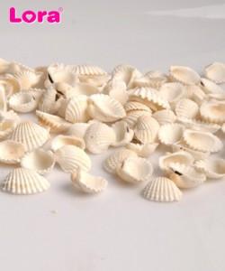 Deniz Ürünleri - 14001