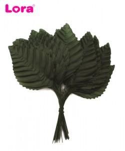 Yaprak Çeşitleri - 98867
