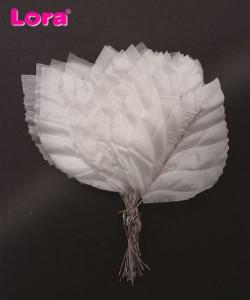Yaprak Çeşitleri - 98869