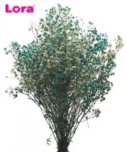 Kuru Çiçek Çeşitleri - 98945