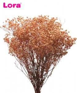 Kuru Çiçek Çeşitleri - 98946