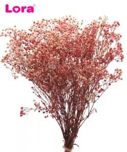 Kuru Çiçek Çeşitleri - 98948