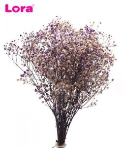 Kuru Çiçek Çeşitleri - 98949