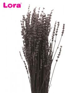 Kuru Çiçek Çeşitleri - 99028
