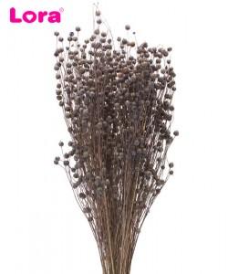 Kuru Çiçek Çeşitleri - 99032