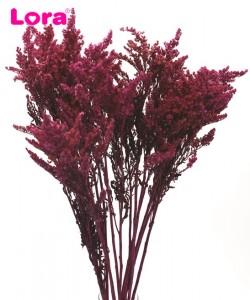 Kuru Çiçek Çeşitleri - 99036