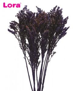 Kuru Çiçek Çeşitleri - 99037