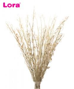 Kuru Çiçek Çeşitleri - 99043