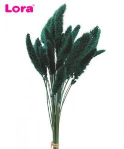 Kuru Çiçek Çeşitleri - 99059