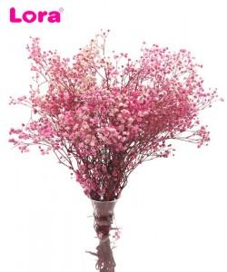 Kuru Çiçek Çeşitleri - 99066