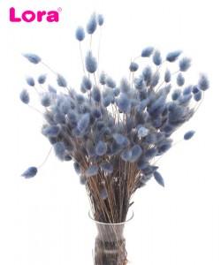 Kuru Çiçek Çeşitleri - 99068