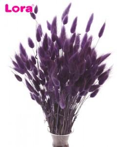 Kuru Çiçek Çeşitleri - 99070
